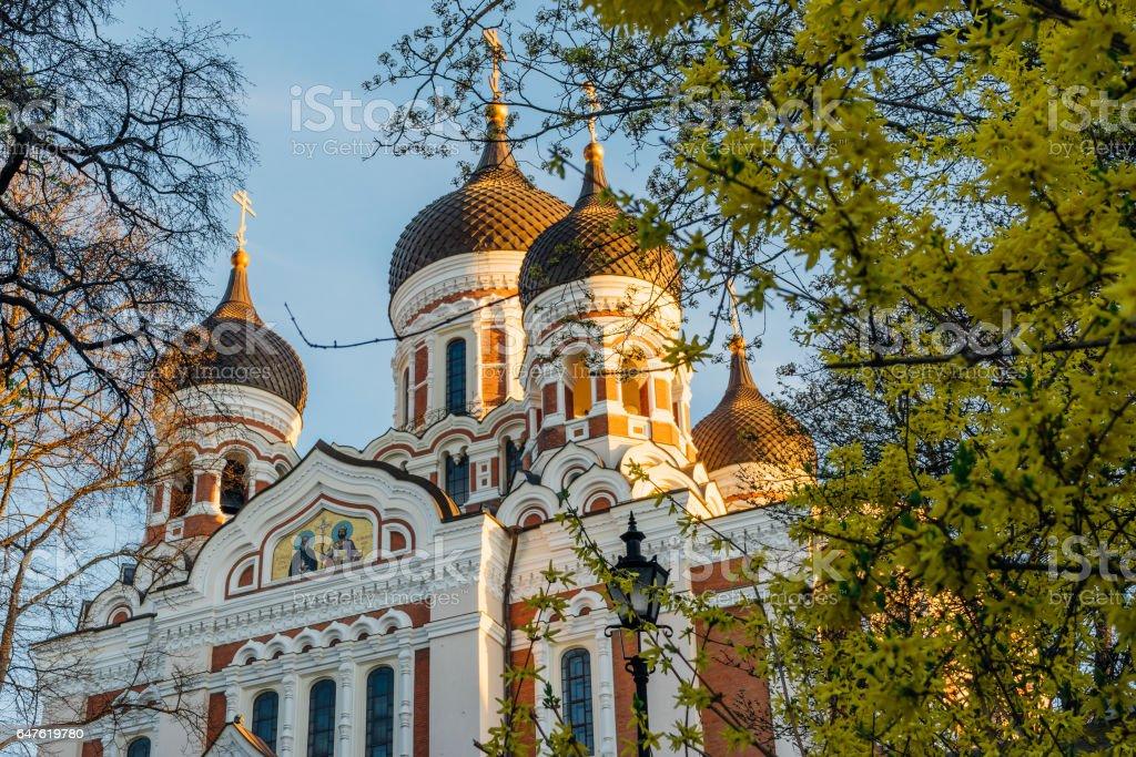 Alexander Nevsky Cathedral view through springtime flowers, Tallinn, Estonia stock photo