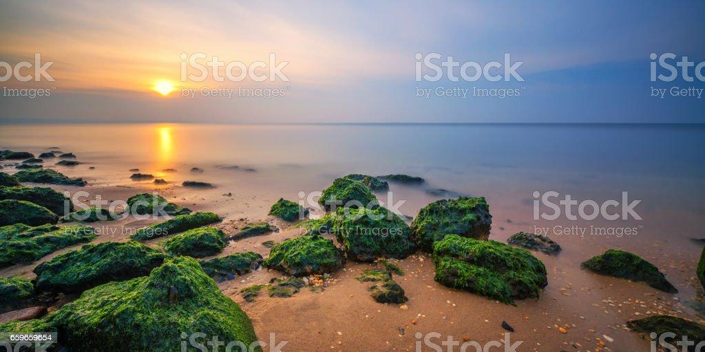 Algae cover rocks seascape sunset stock photo