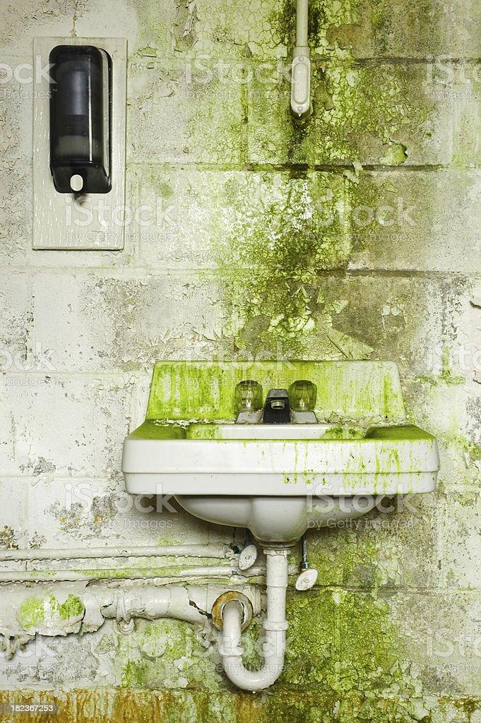 Algae covered washroom royalty-free stock photo
