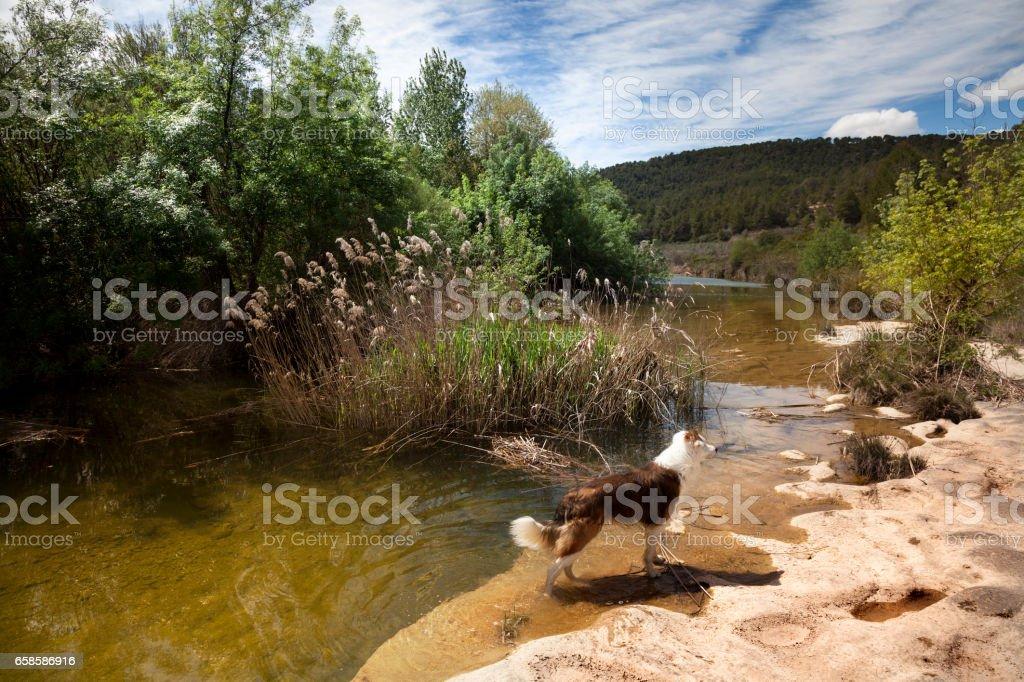 Algars river stock photo