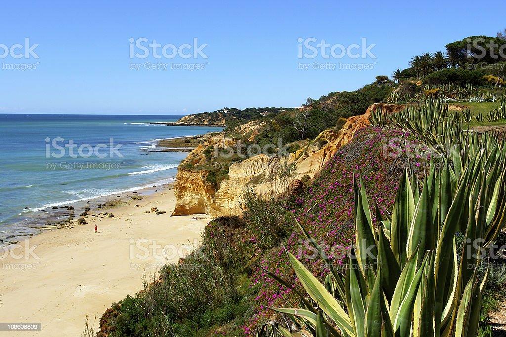 Algarve cliff coast scenario royalty-free stock photo