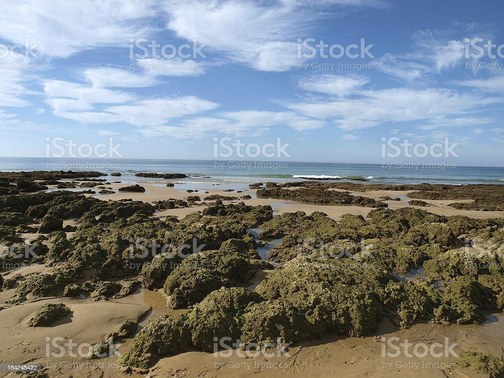 Algarve coast at low tide the ocean royalty-free stock photo