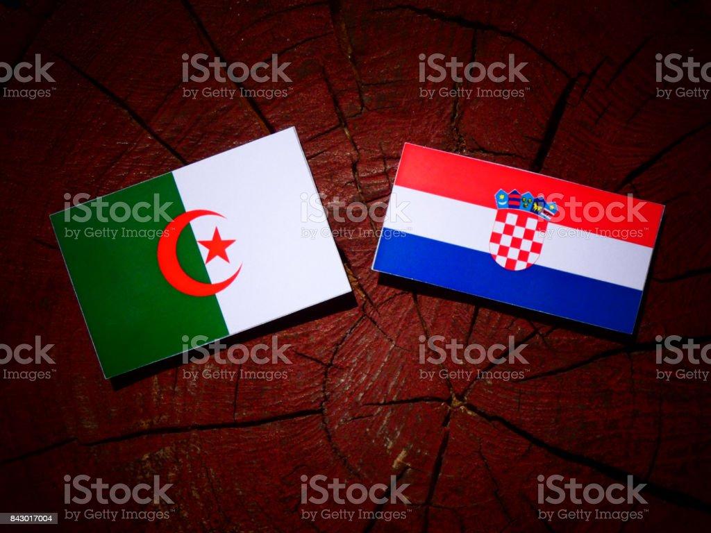 Algerian flag with Croatian flag on a tree stump isolated stock photo