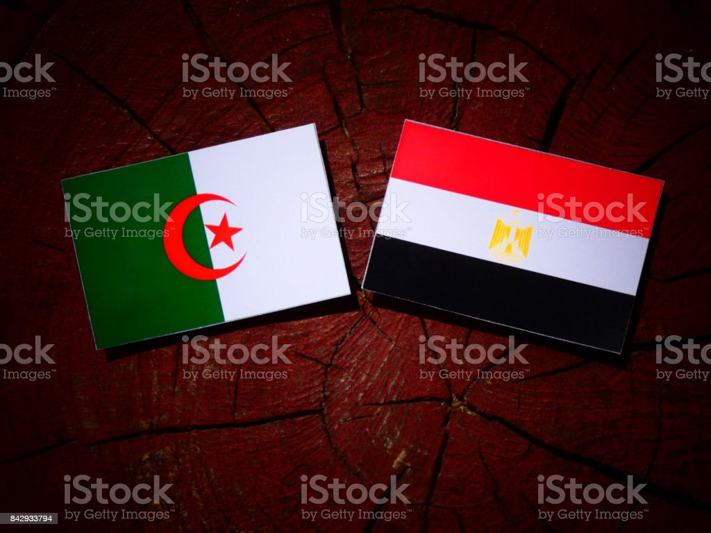 Algerian flag with Egyptian flag on a tree stump isolated stock photo