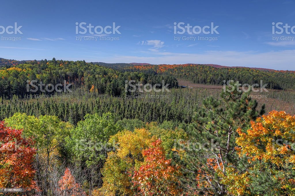 Algonquin forest overlook in fall stock photo