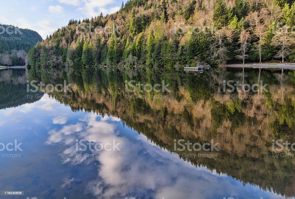 Alice Lake Forest Reflection royalty-free stock photo