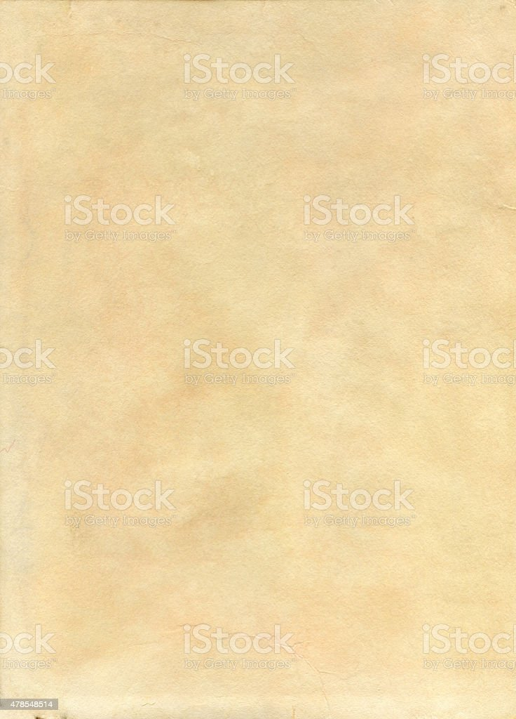Alice wolf brown paper background vector art illustration
