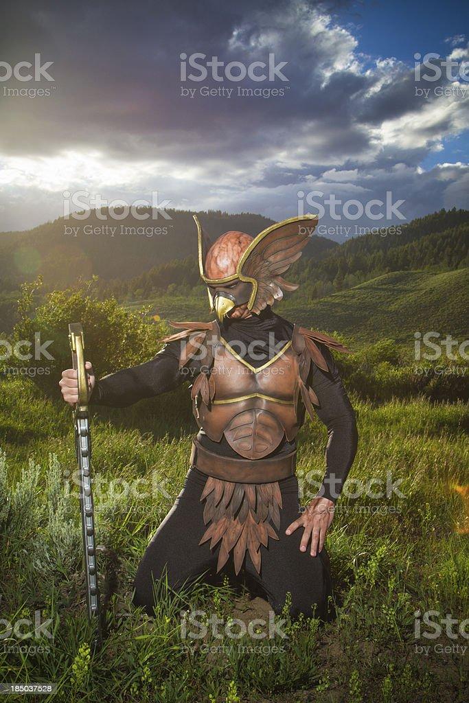 Alien birdman in the countryside stock photo