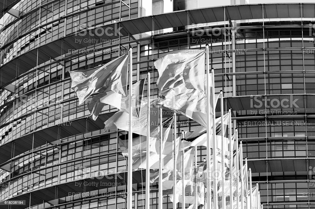 All Eu Flags Eurozone waving against European parliament buildin stock photo