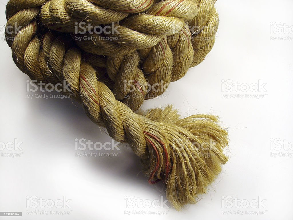 All in a knot stock photo