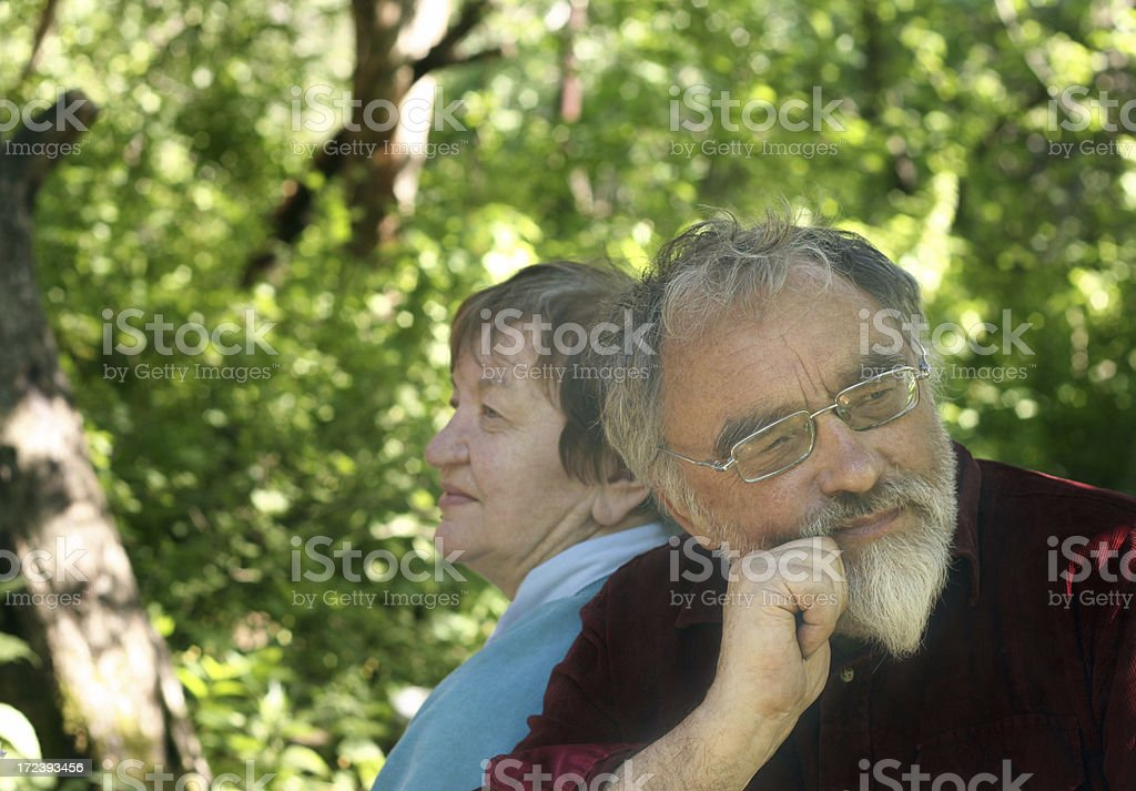 all life together royalty-free stock photo