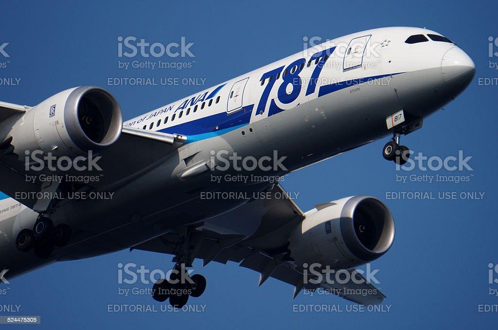 All Nippon Airways (ANA) Boeing 787-8 stock photo