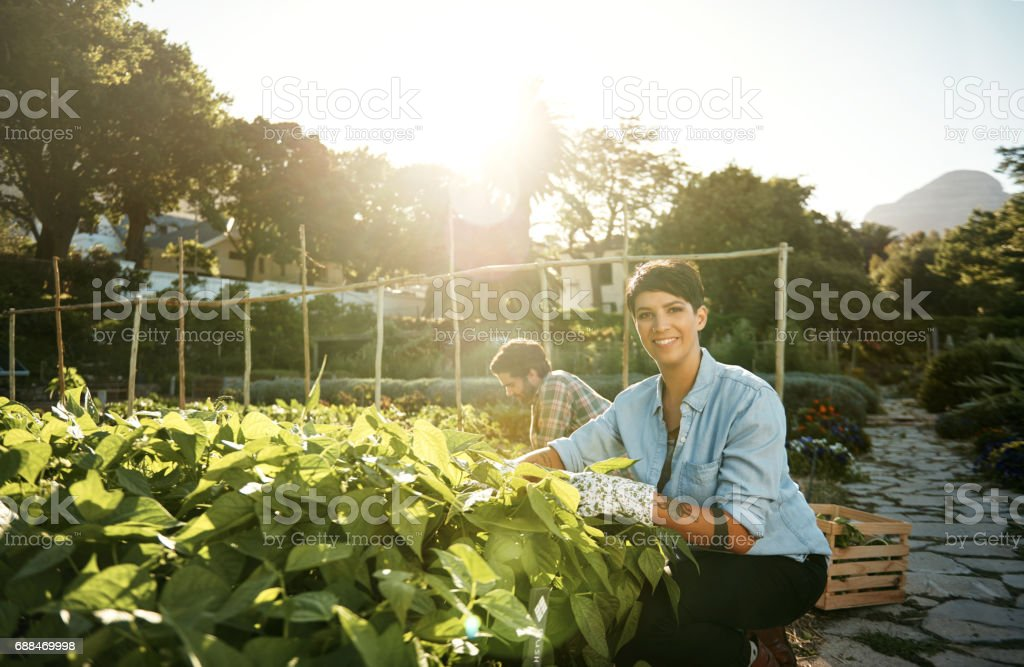 All our produce are grown with love stock photo
