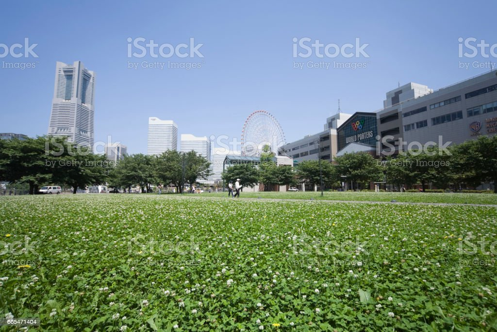 All regarded as they want and Shamrock stock photo