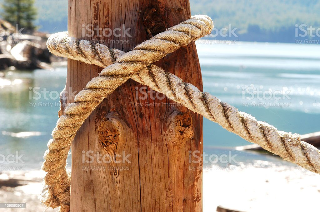 all tied up stock photo