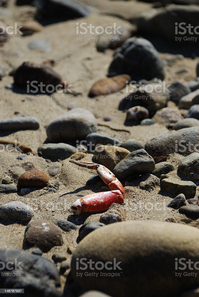 All washed up stock photo