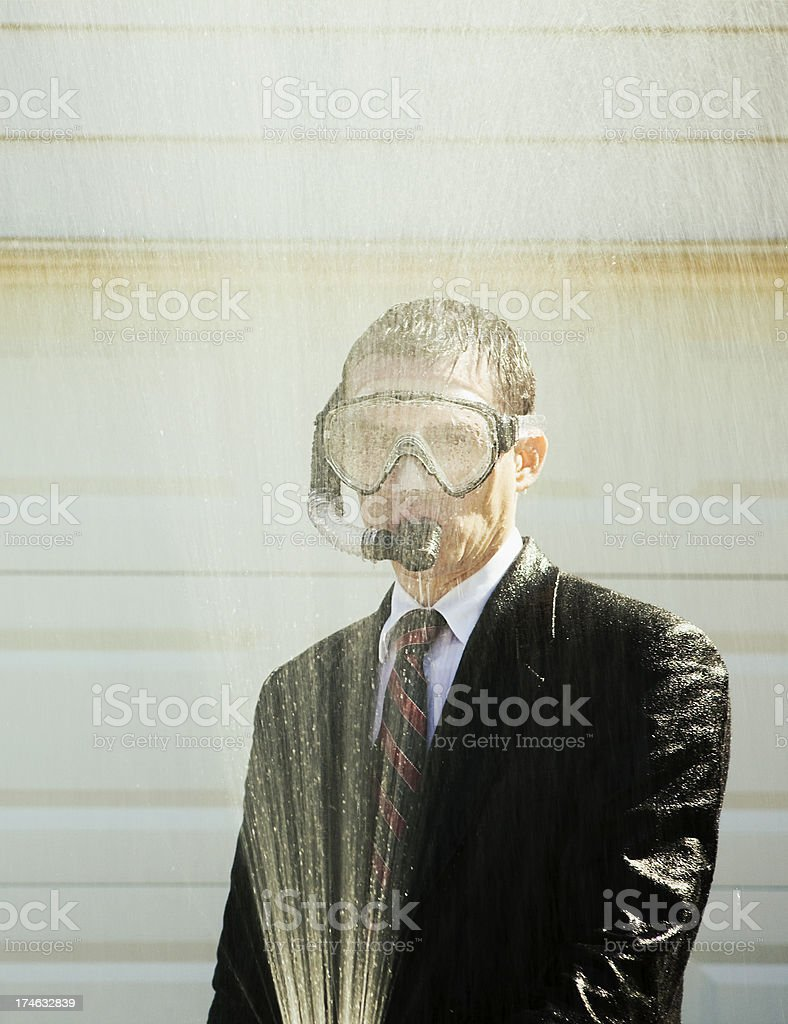 all wet royalty-free stock photo