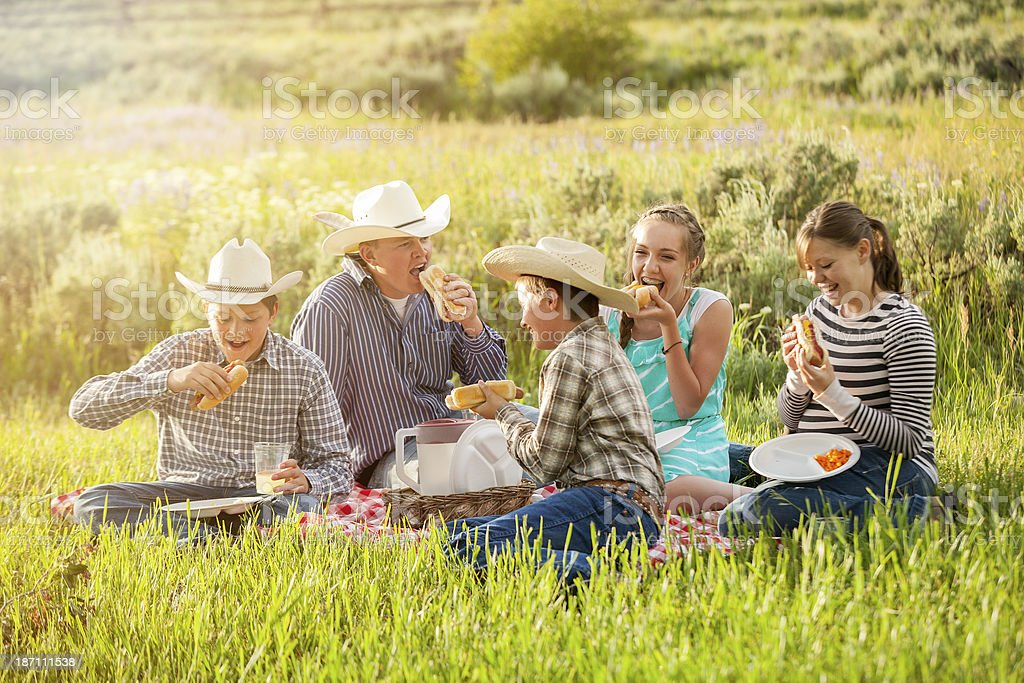 All-American Cookout royalty-free stock photo