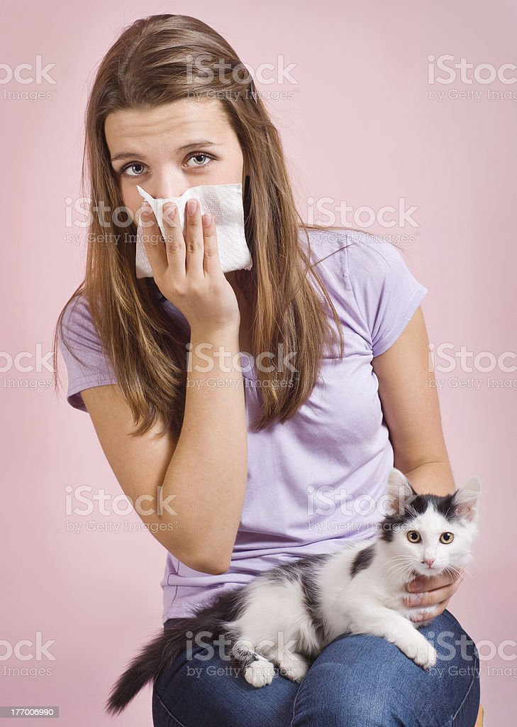 allergic to cat royalty-free stock photo