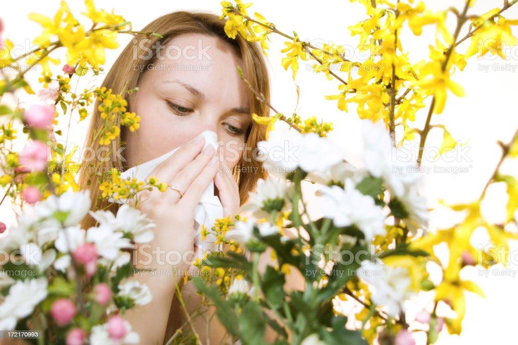 Allergy royalty-free stock photo
