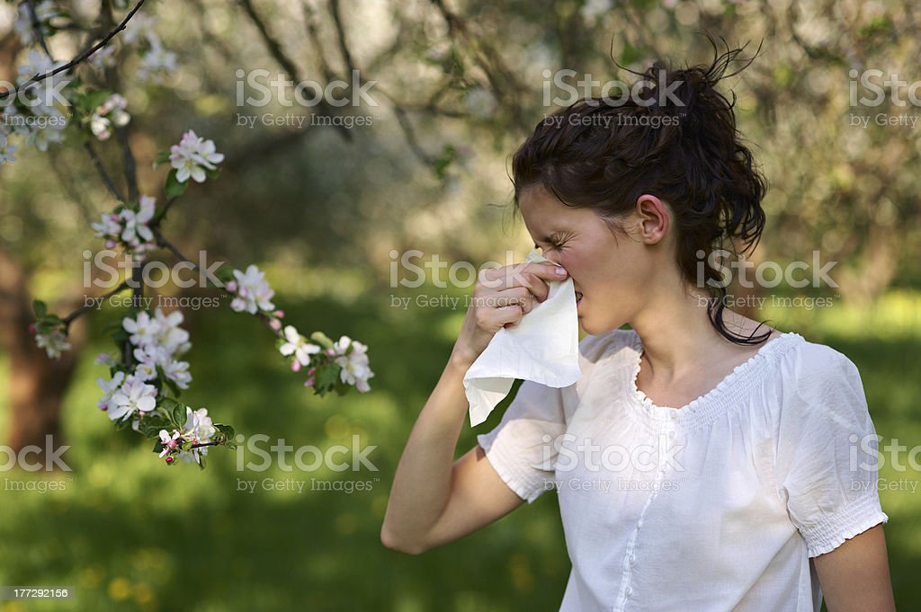 Allergy season sneeze stock photo