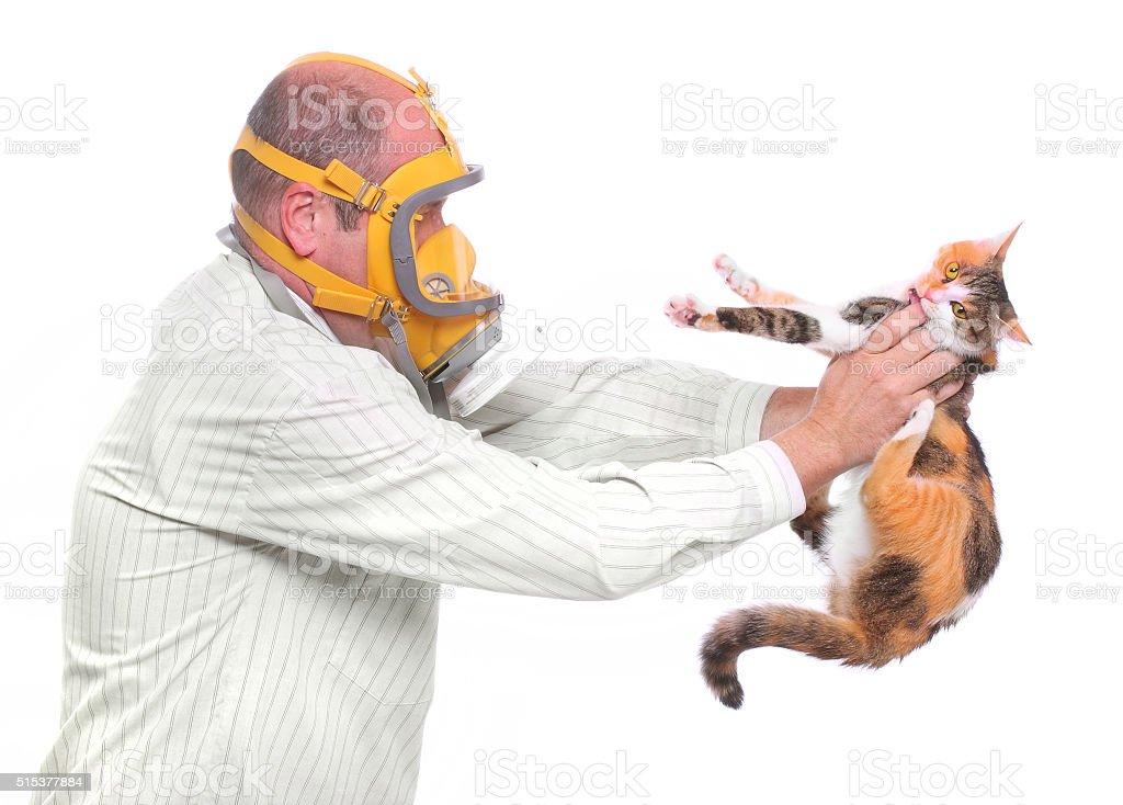 Allergy to animal. stock photo