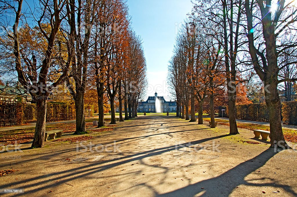 Alley covered by fall leaves in a park royalty-free stock photo
