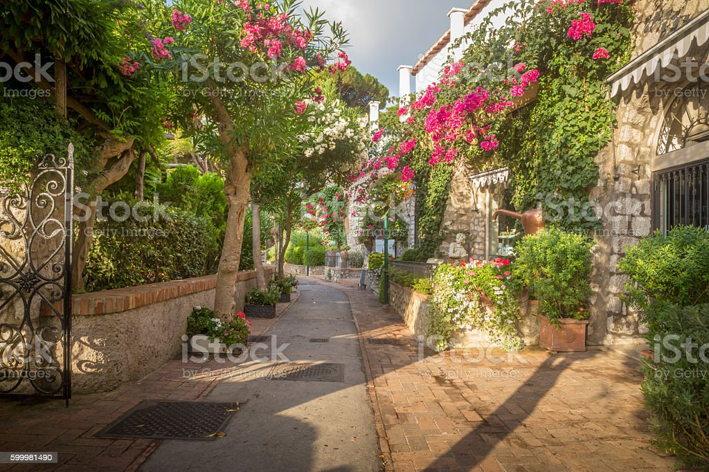 Alley full of trees and flowers on Capri Island, Italy stock photo