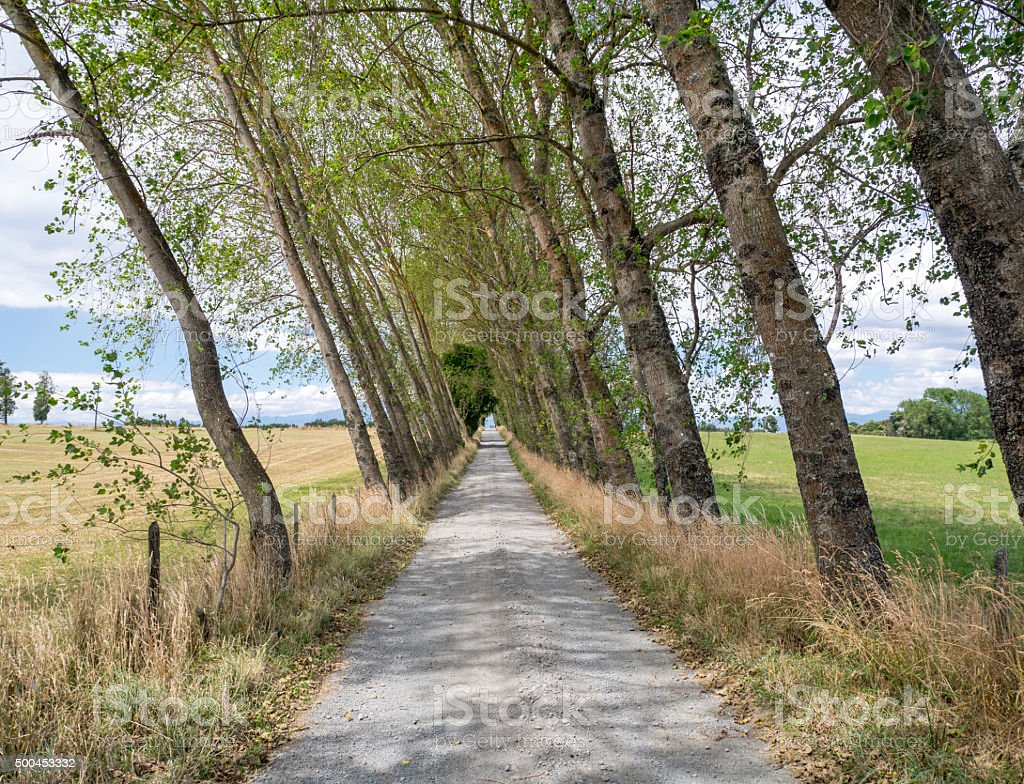 Alley in Patagonia, Chile royalty-free stock photo