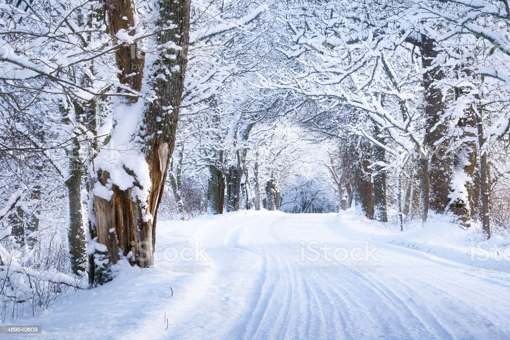 Alley in snowy morning stock photo