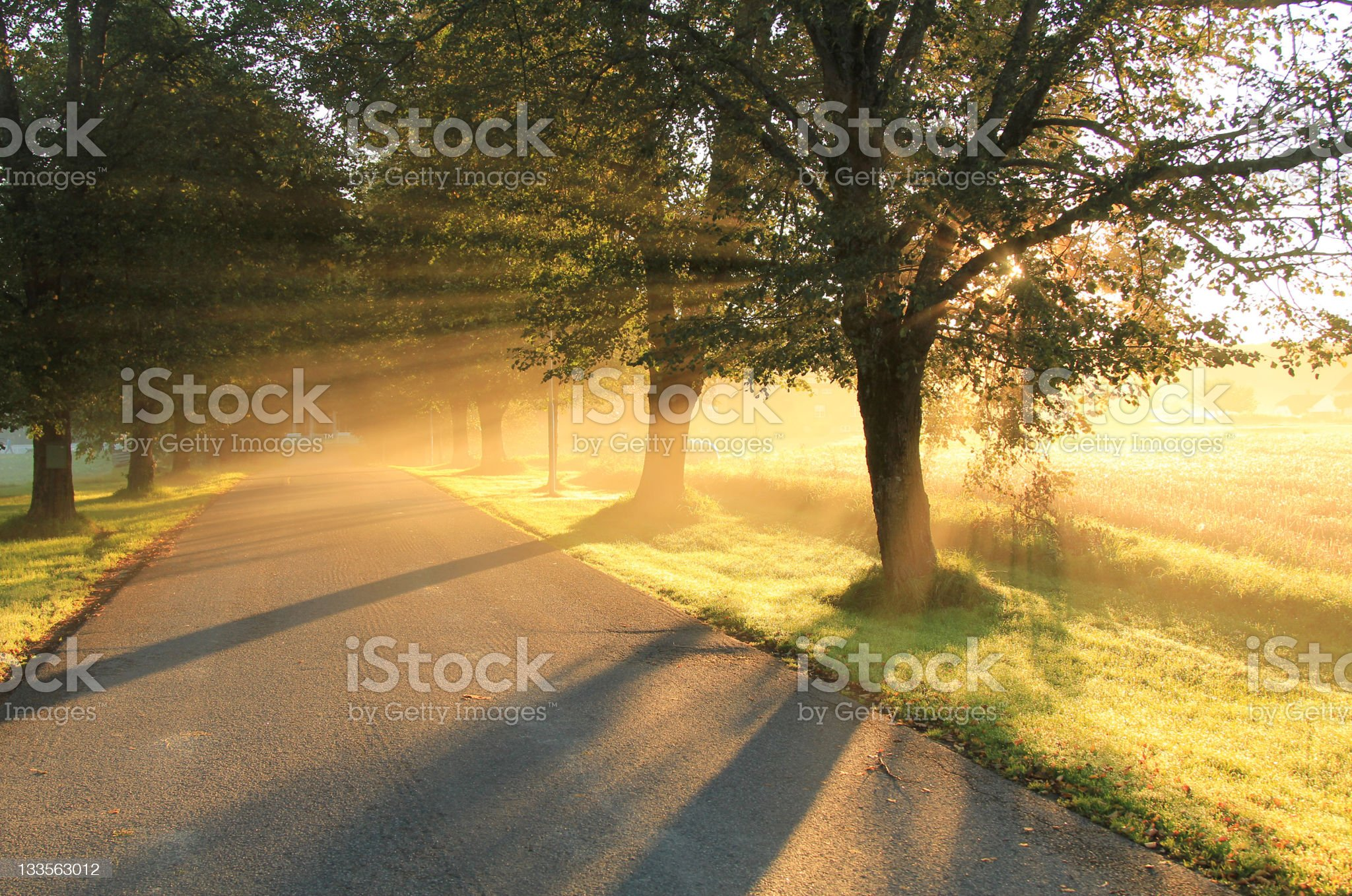 Alley in the fall. royalty-free stock photo