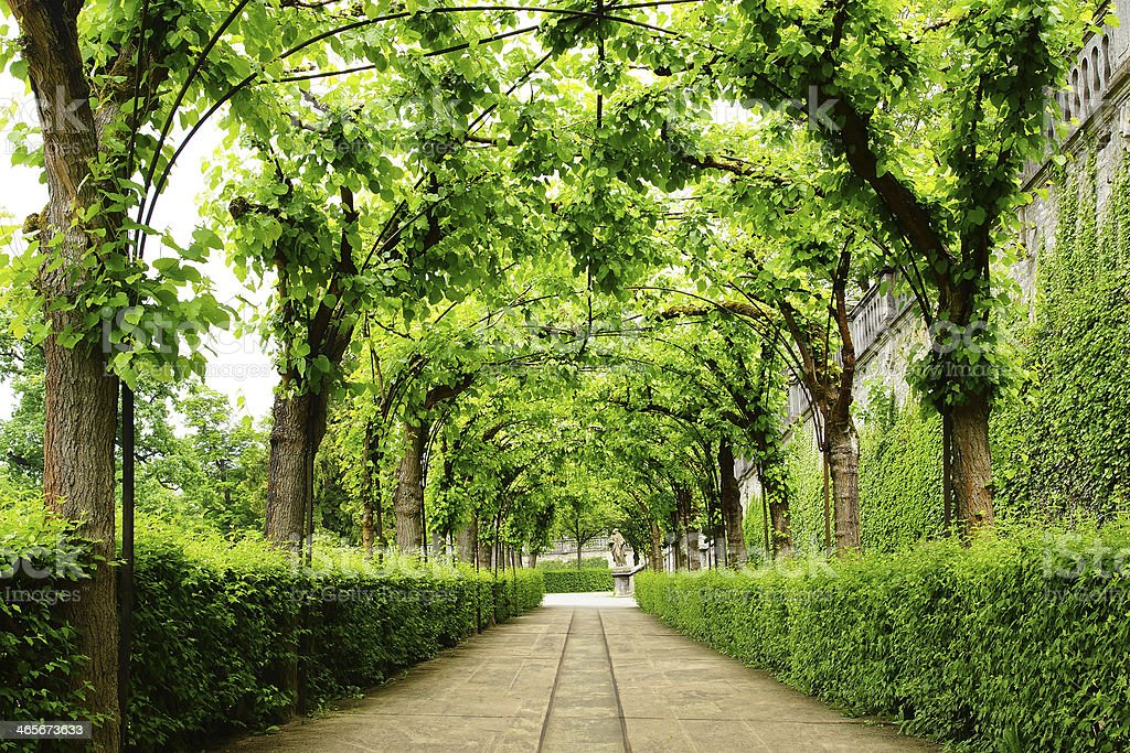 Alley Park in the Wurzburger Residenze. Germany stock photo