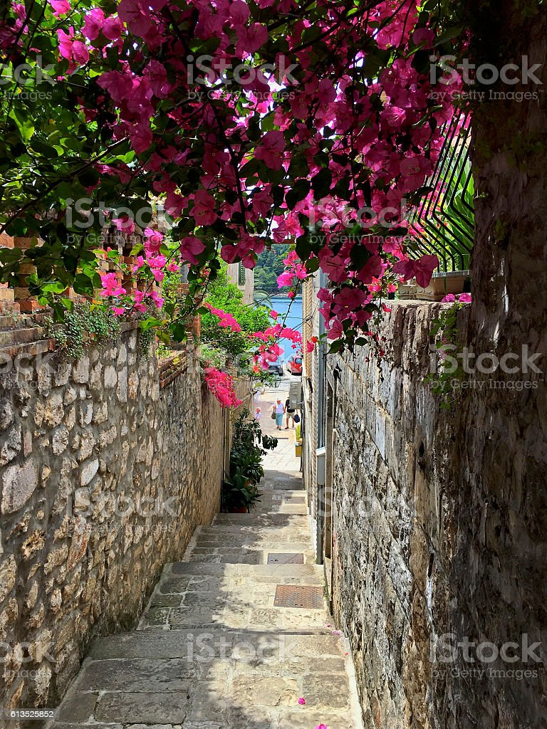 Alleyway in Cavtat Old Town, Croatia with Bougainvillea Flowers stock photo