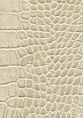 Alligator leather.