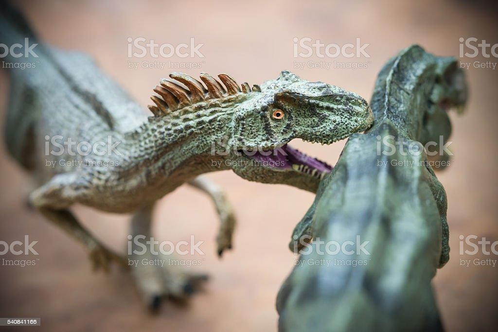 allosaurus biting tyrannosaurus on rock stock photo
