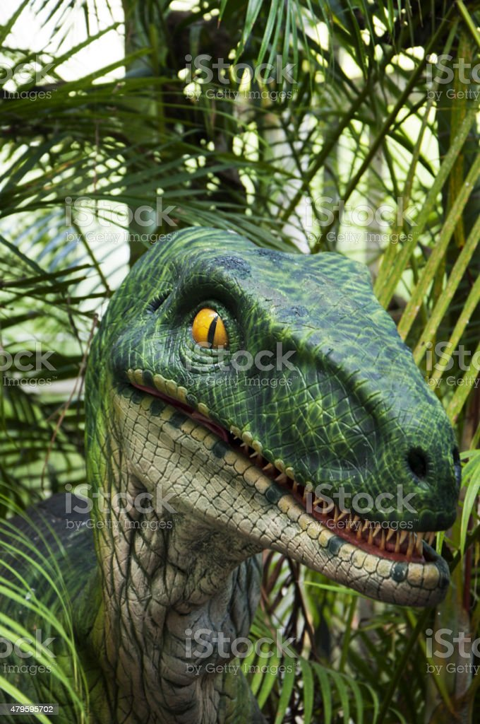 Allosaurus dinosaur isolated stock photo