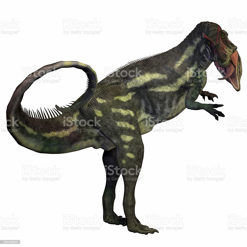 Allosaurus over White stock photo