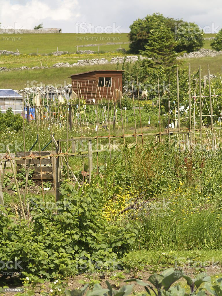 Allotments royalty-free stock photo