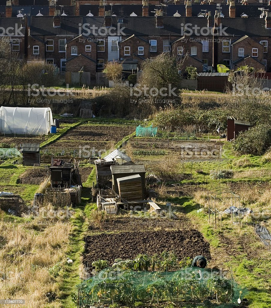 Allotments, Worcester royalty-free stock photo