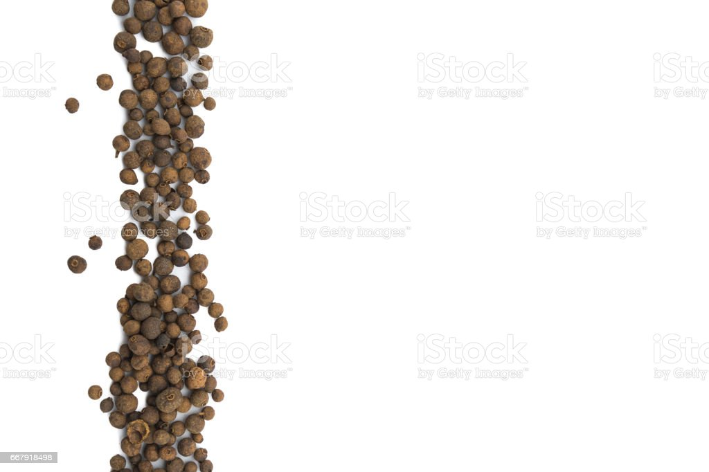 Allspice Berries in Vertical Row on Isolated White stock photo