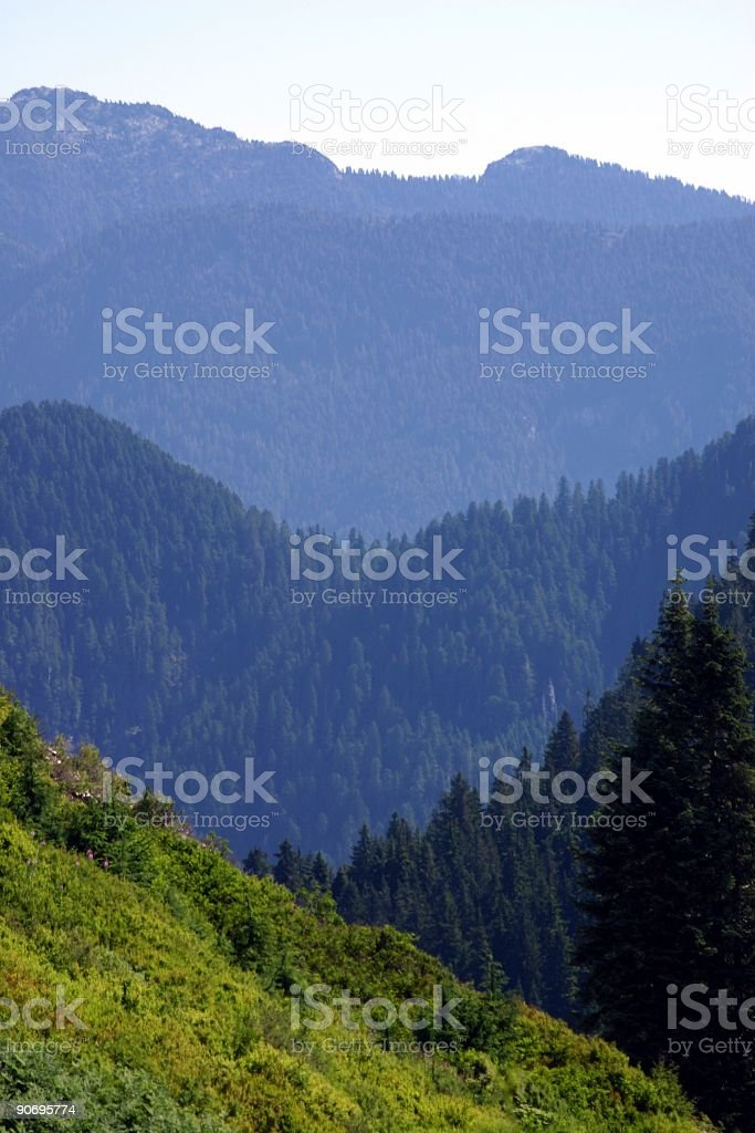 Alluring North Shore Mountains royalty-free stock photo
