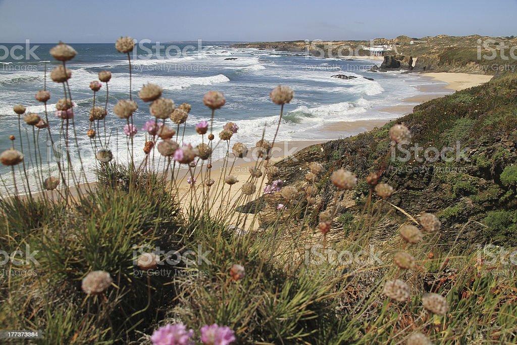Almograve beach royalty-free stock photo
