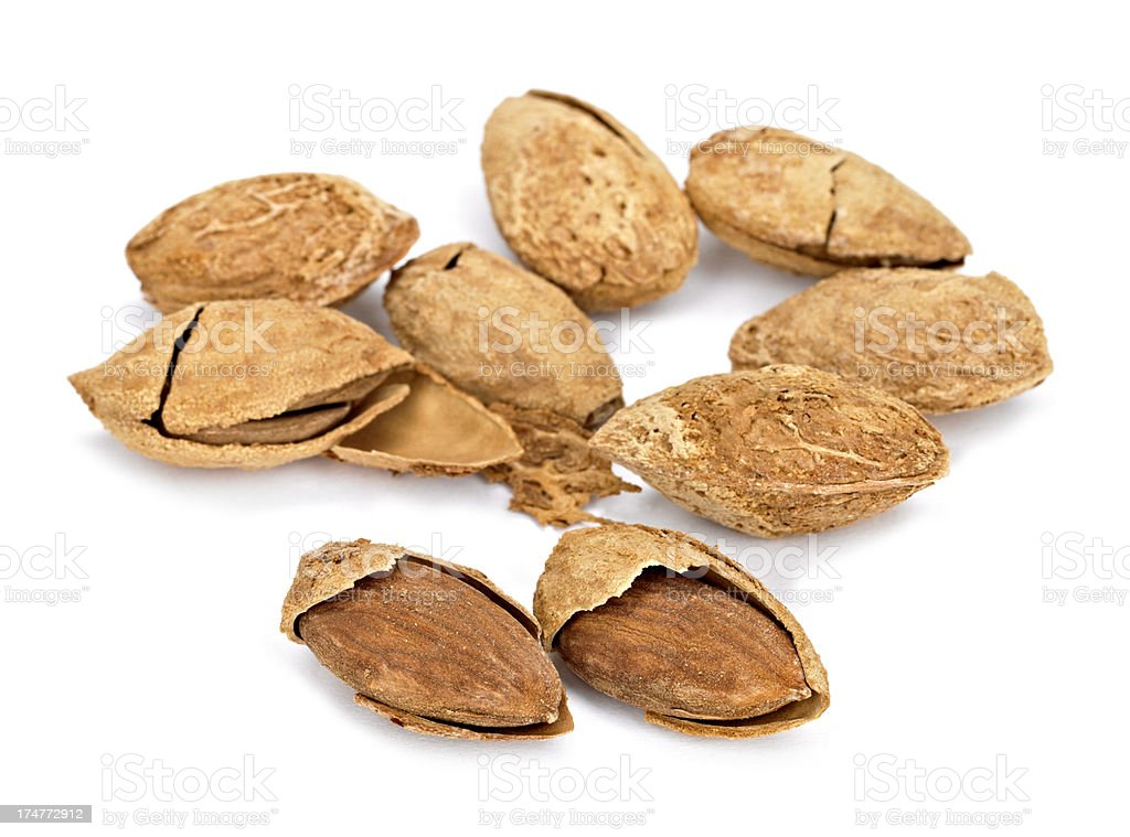 Almond in  Shell royalty-free stock photo