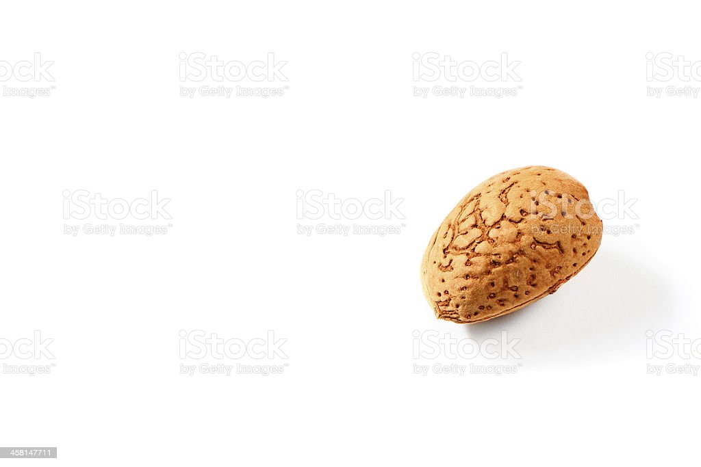 almond with shell royalty-free stock photo