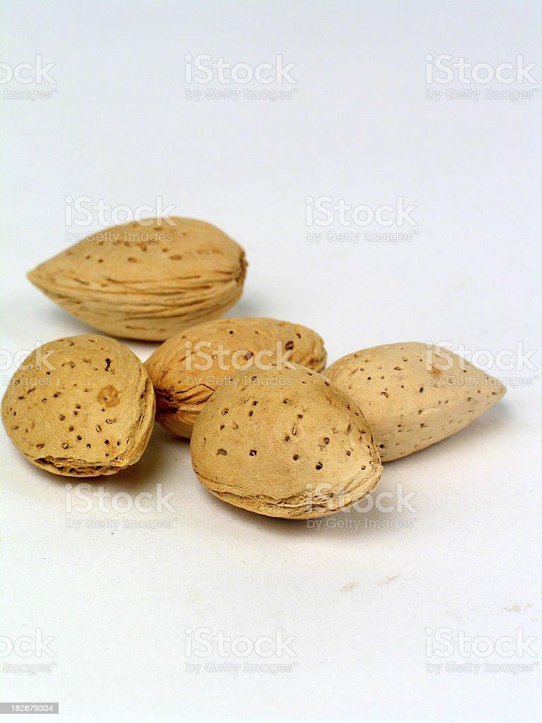 Almond2 stock photo