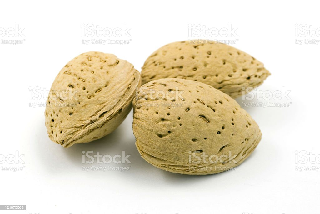 Almonds in Shell royalty-free stock photo