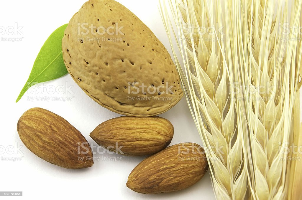 Almonds with wheat royalty-free stock photo