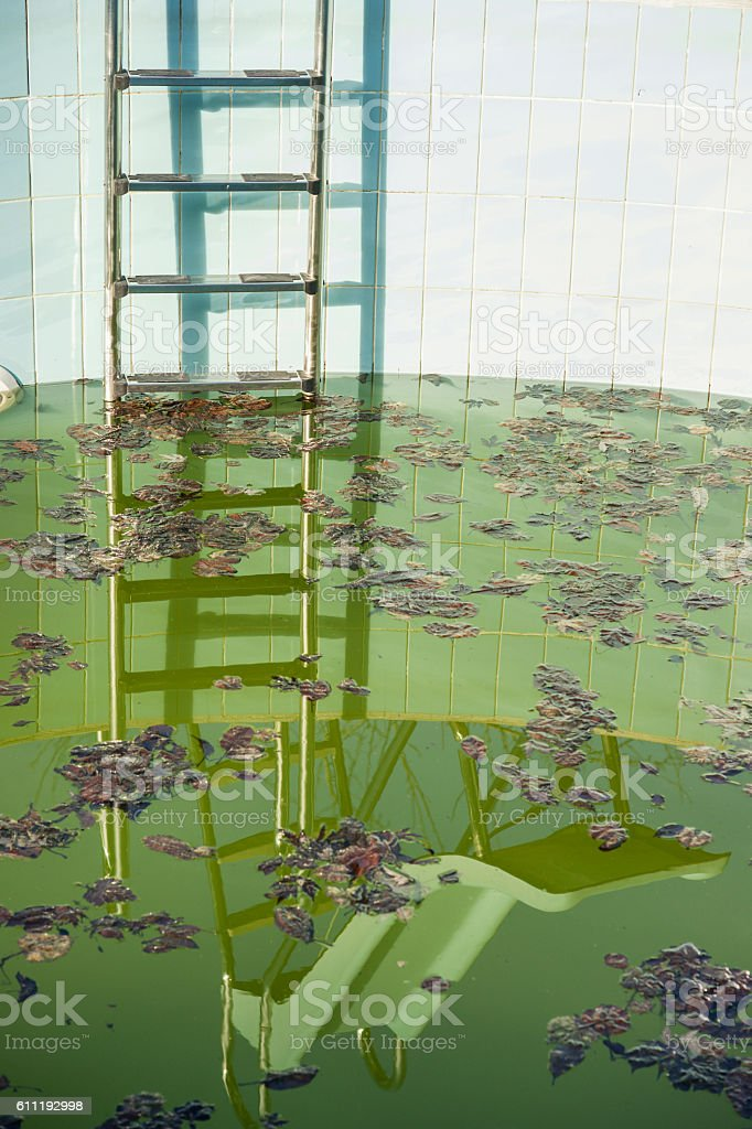 Almost empty pool with dirty water and ladder stock photo