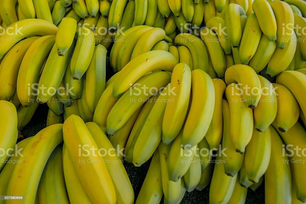 Almost Ripe Bananas stock photo