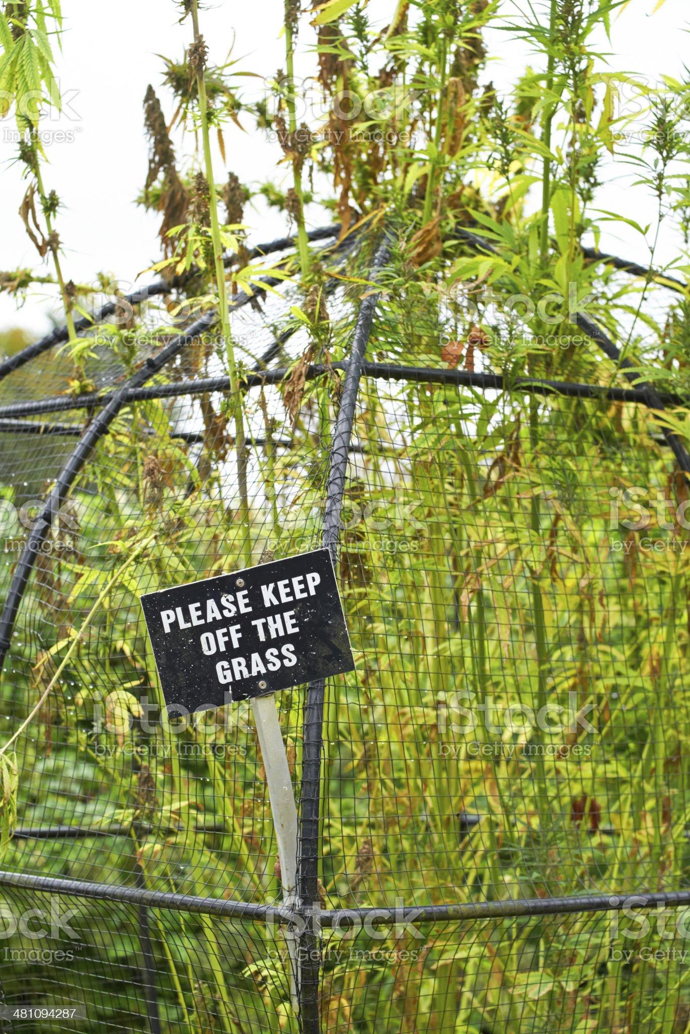 Alnwick Garden royalty-free stock photo